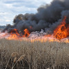 04.11.12 - Multiple Alarm Brushfire - Carlstadt, NJ. :